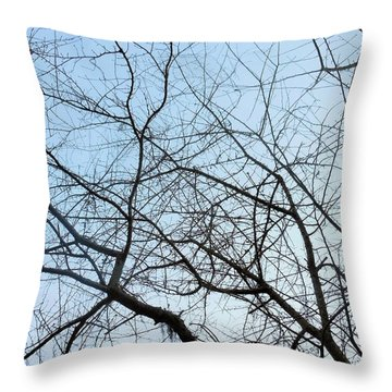 Throw Pillow featuring the photograph Winter Of Life by Kay Gilley