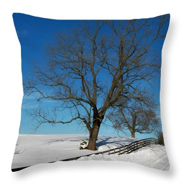 Winter On A Country Road Throw Pillow by Joyce Kimble Smith