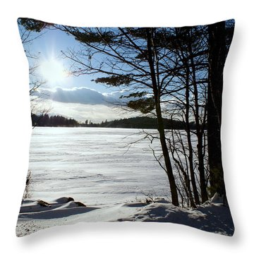Winter On Dublin Lake Throw Pillow