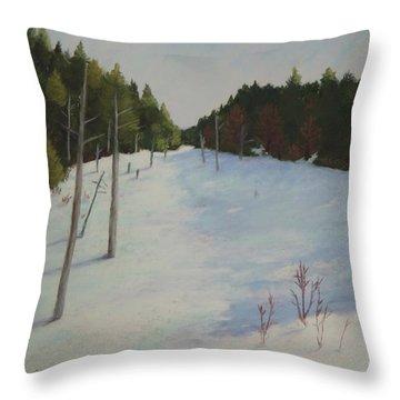 Winter On Moose Pond Throw Pillow