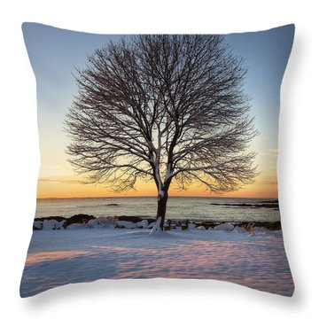 Winter On The Coast Throw Pillow