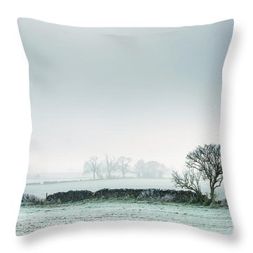 Winter On The Mendips Throw Pillow