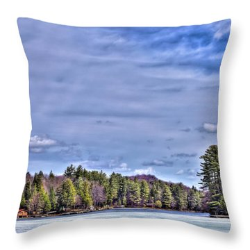 Throw Pillow featuring the photograph Winter On The Pond by David Patterson
