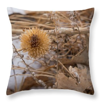 Winter On The Range Throw Pillow