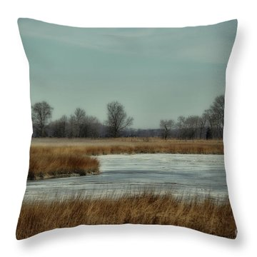 Winter On The Water Throw Pillow by Tamera James