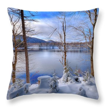 Winter On West Lake Throw Pillow by David Patterson