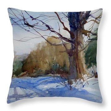 Winter On White Road Throw Pillow