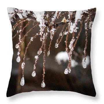 Winter Ornament Throw Pillow