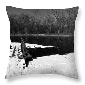 Winter Park 2 Throw Pillow