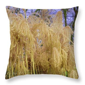Winter Park Bulrush Throw Pillow