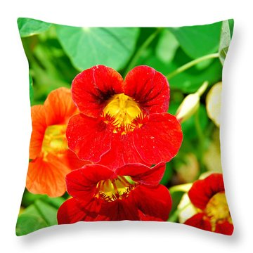 Winter Park Nasturtium 2 Throw Pillow