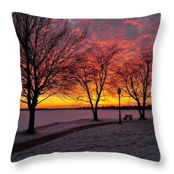 Throw Pillow featuring the photograph Winter Park by Terri Gostola