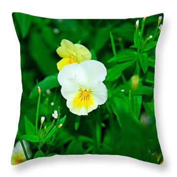 Winter Park Violets 1 Throw Pillow