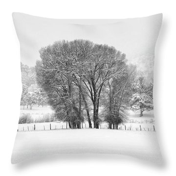 Winter Pasture In Black And White Throw Pillow