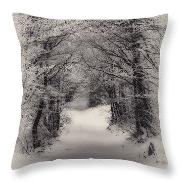 Winter Path Throw Pillow