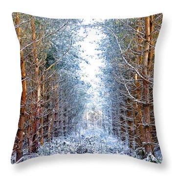 Winter Path Throw Pillow by Svetlana Sewell
