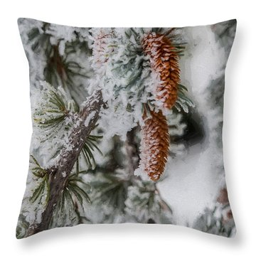 Winter Pine Cones Throw Pillow