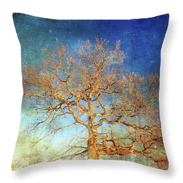 Winter Promise Throw Pillow