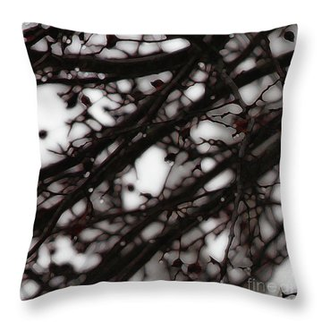 Throw Pillow featuring the photograph Winter Rain - 3 by Linda Shafer