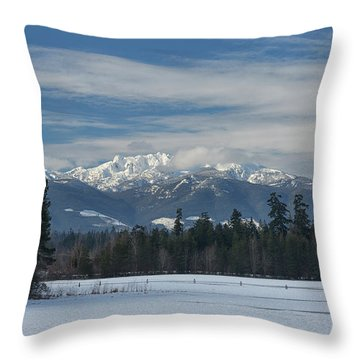 Throw Pillow featuring the photograph Winter by Randy Hall