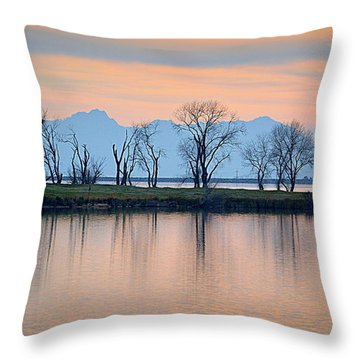 Throw Pillow featuring the photograph Winter Reflections by AJ Schibig