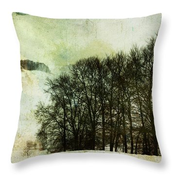 Winter Remembrances Throw Pillow