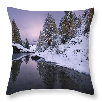 Winter Reverie Throw Pillow