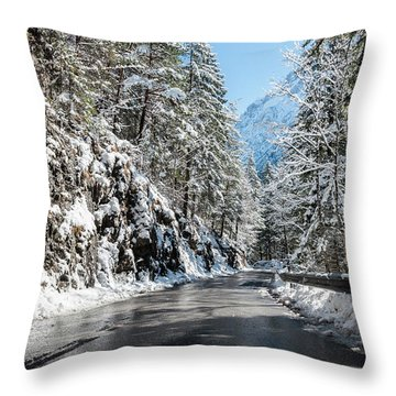 Winter Road Throw Pillow by Sergey Simanovsky