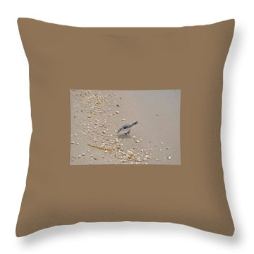 Winter Sanderling Throw Pillow