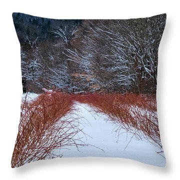 Throw Pillow featuring the photograph Winter Scene by Tom Singleton