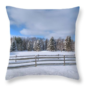 Throw Pillow featuring the photograph Winter Scenery 14589 by Guy Whiteley