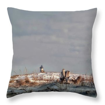 Winter Scented Sand Throw Pillow by Richard Bean