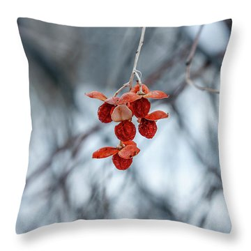 Winter Seeds Throw Pillow