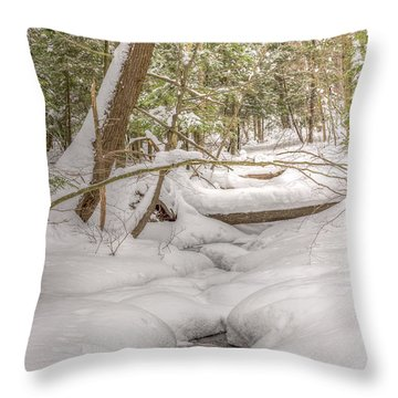 Winter Serenity Throw Pillow