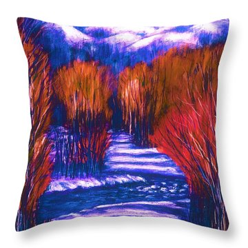 Winter Shadows  Throw Pillow