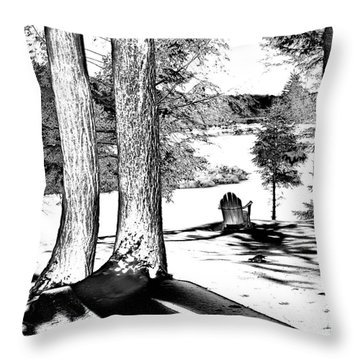 Throw Pillow featuring the photograph Winter Shadows by David Patterson