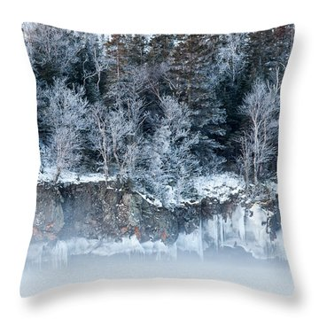 Winter Shore Throw Pillow