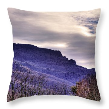 Winter's Sleep Throw Pillow