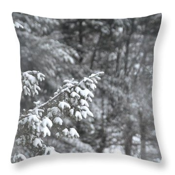 Throw Pillow featuring the photograph Winter Snow by John Black