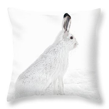 Throw Pillow featuring the photograph  Winter Snowshoe Hare by Jennie Marie Schell