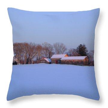 Winter Solace Throw Pillow by Leonardo Ruggieri