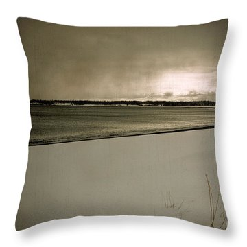 Throw Pillow featuring the photograph Winter Solitude by Alana Ranney