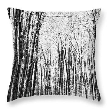 Winter Startk Throw Pillow