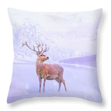 Winter Story Throw Pillow