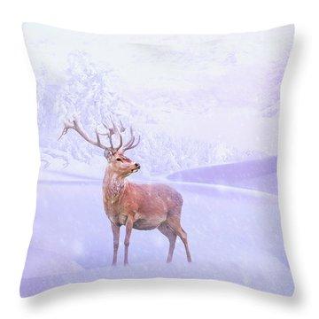 Winter Story Throw Pillow