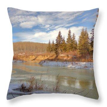 Winter Stream Throw Pillow by Jim Sauchyn