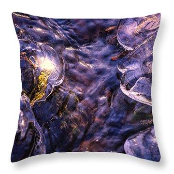 Winter Streams Throw Pillow