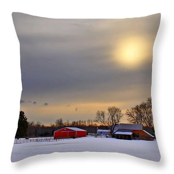 Winter Sun Throw Pillow by Evelina Kremsdorf