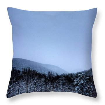 Winter Sun Throw Pillow by Jonny D