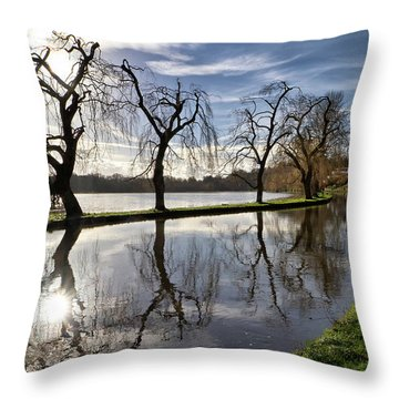Throw Pillow featuring the photograph Winter Sun by Shirley Mitchell